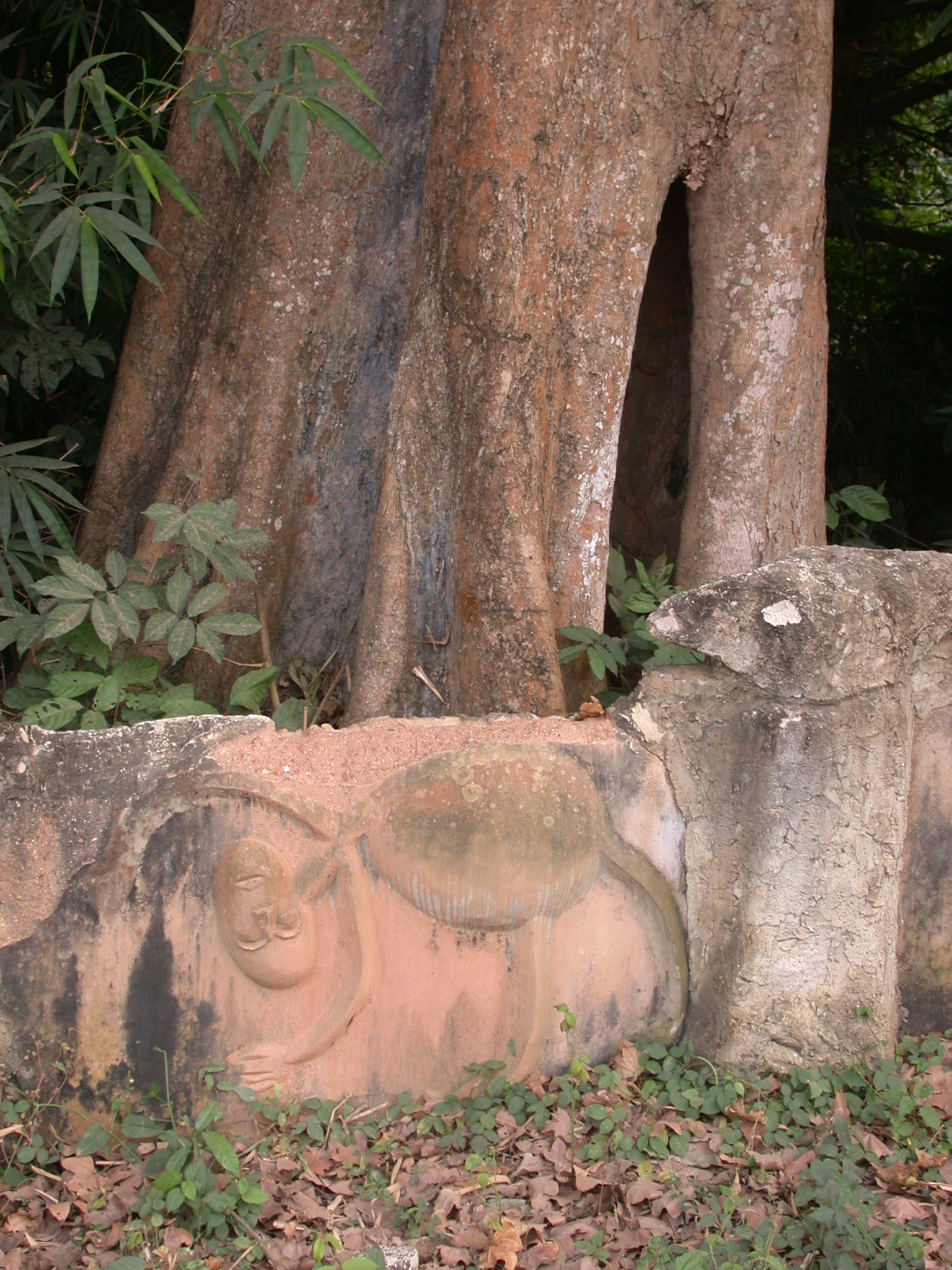 Sculpture Shrine and Hollow Tree on Access Road, Osun Sacred Grove, Oshogbo, Nigeria