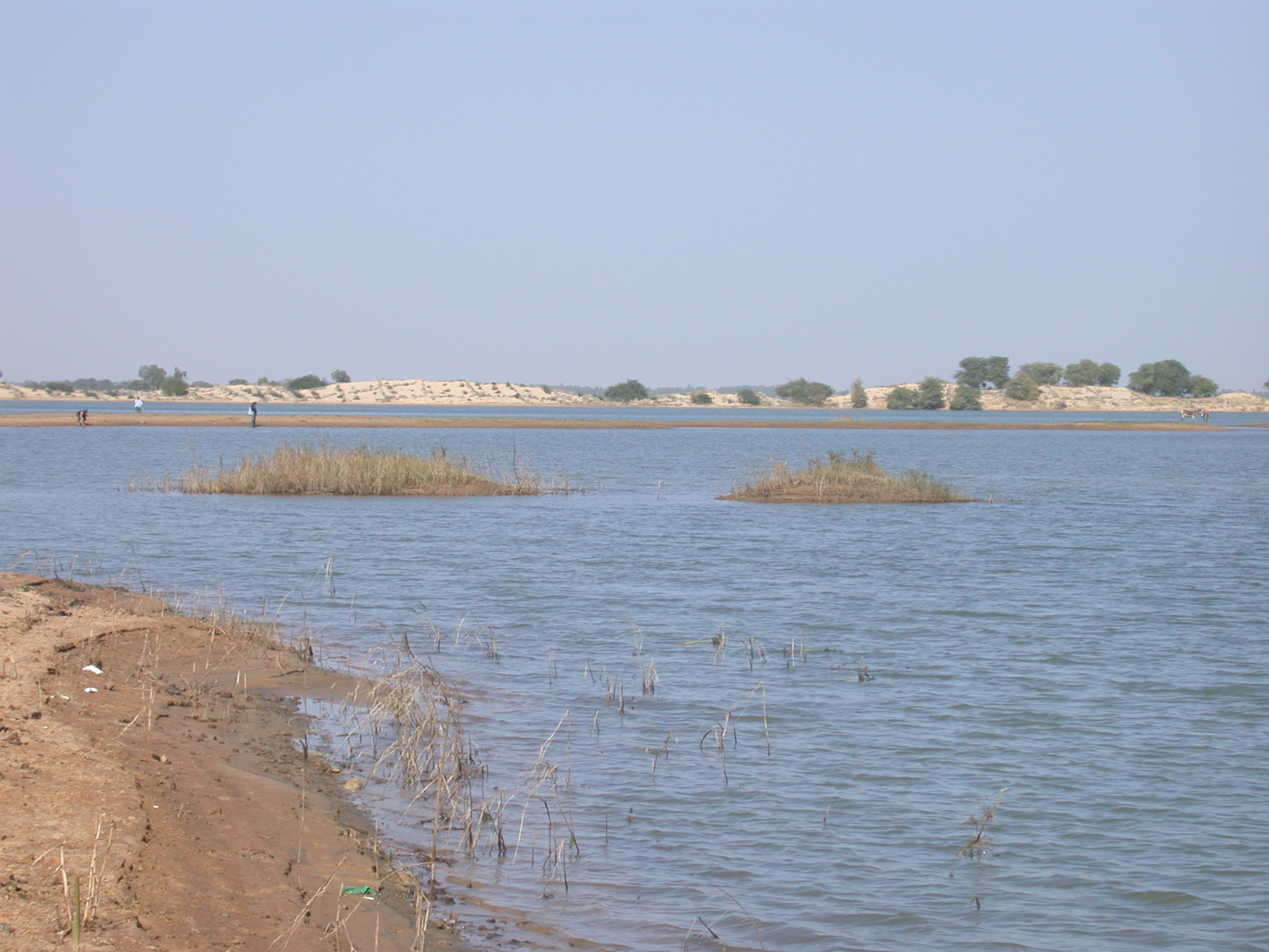 Branch of Niger River Near Timbuktu, Mali