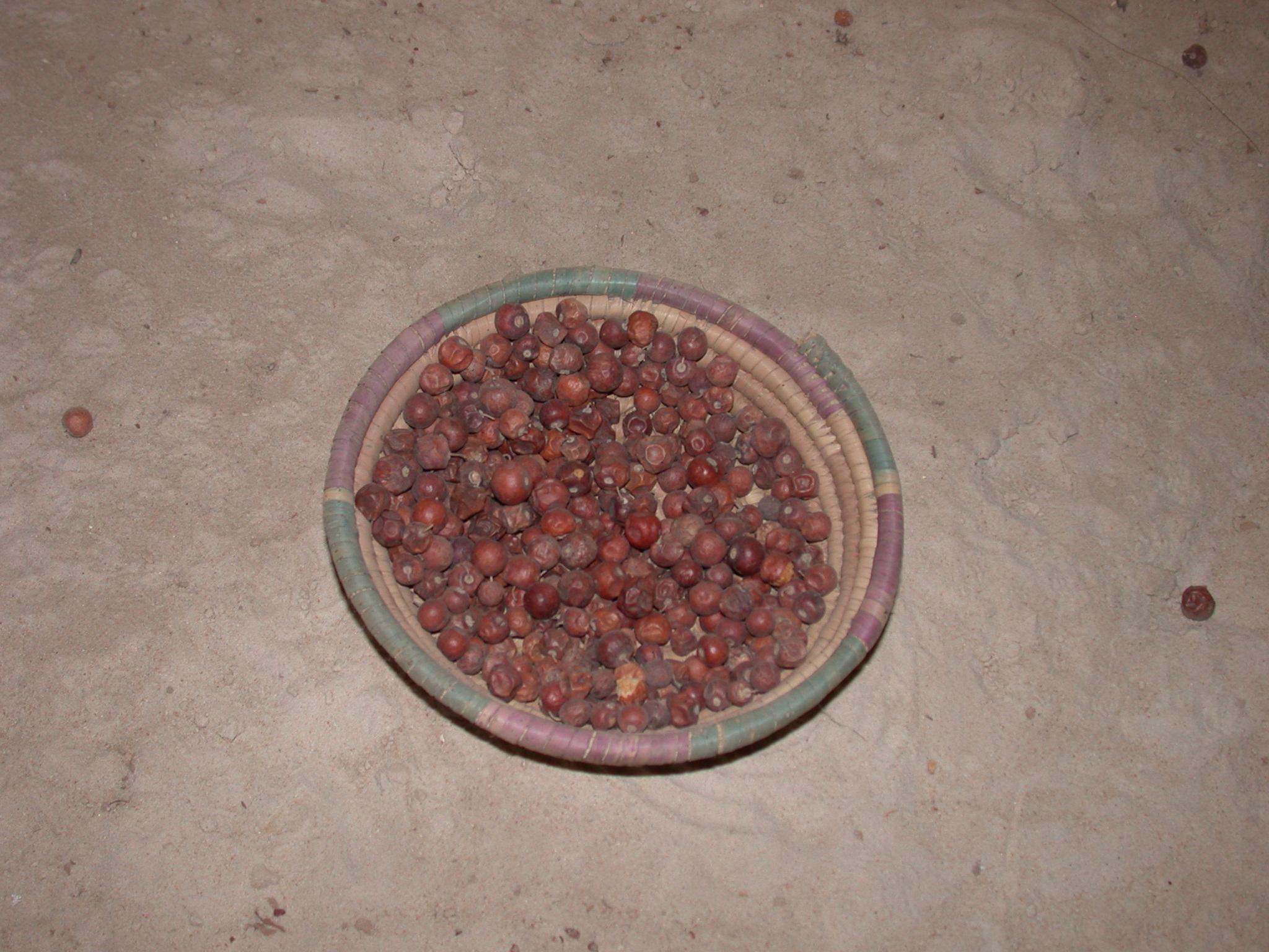 Jujube, Timbuktu Ethnological Museum, Timbuktu, Mali