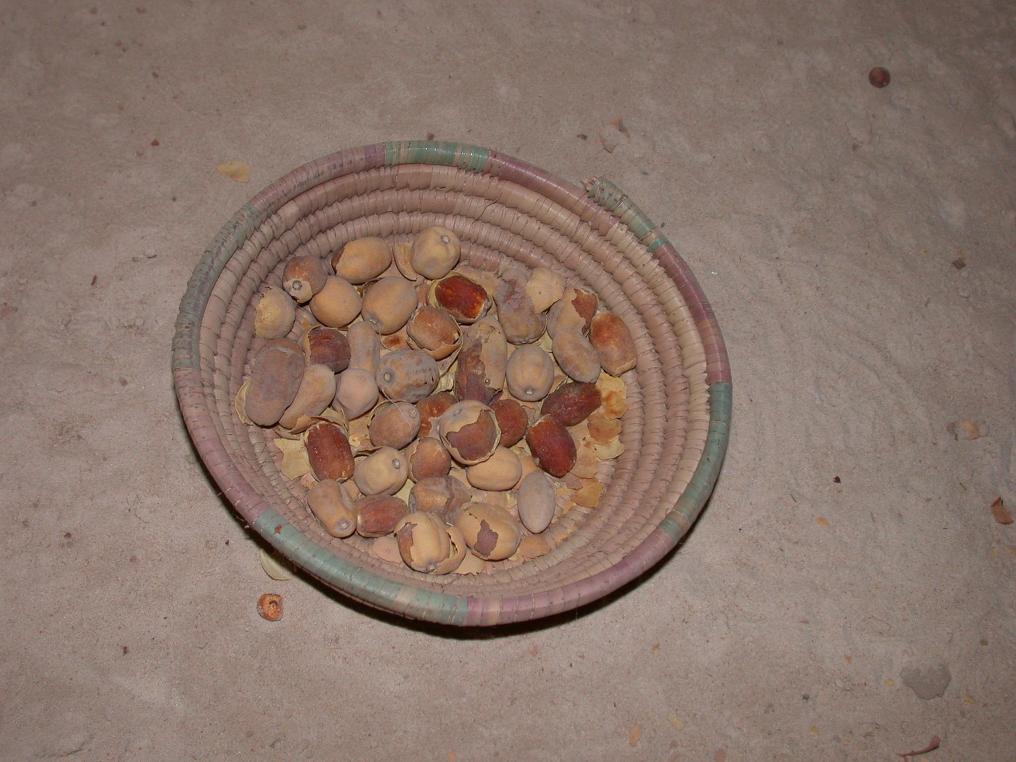Wild Dates, Timbuktu Ethnological Museum, Timbuktu, Mali