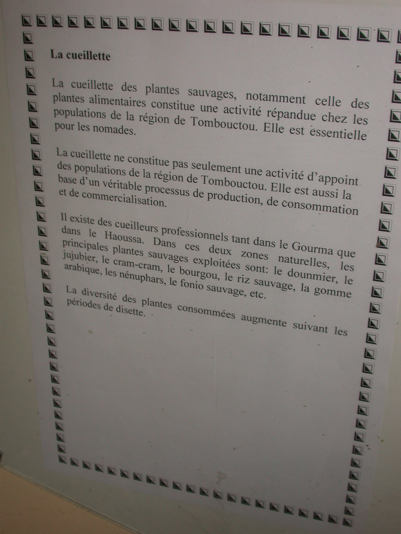 Description of Gathering Wild Plants, Timbuktu Ethnological Museum, Timbuktu, Mali