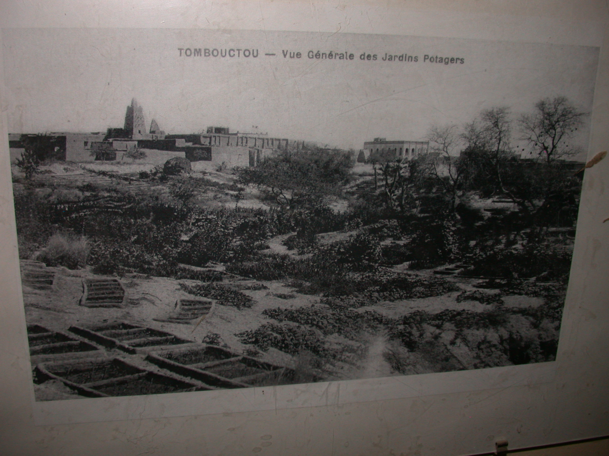 Old Photo of Timbuktu Vegetable Gardens, Timbuktu Ethnological Museum, Timbuktu, Mali