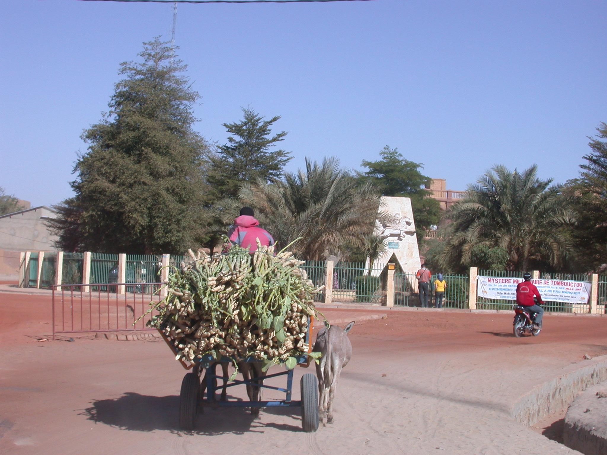 Donkey Cart, Town Square, Timbuktu, Mali