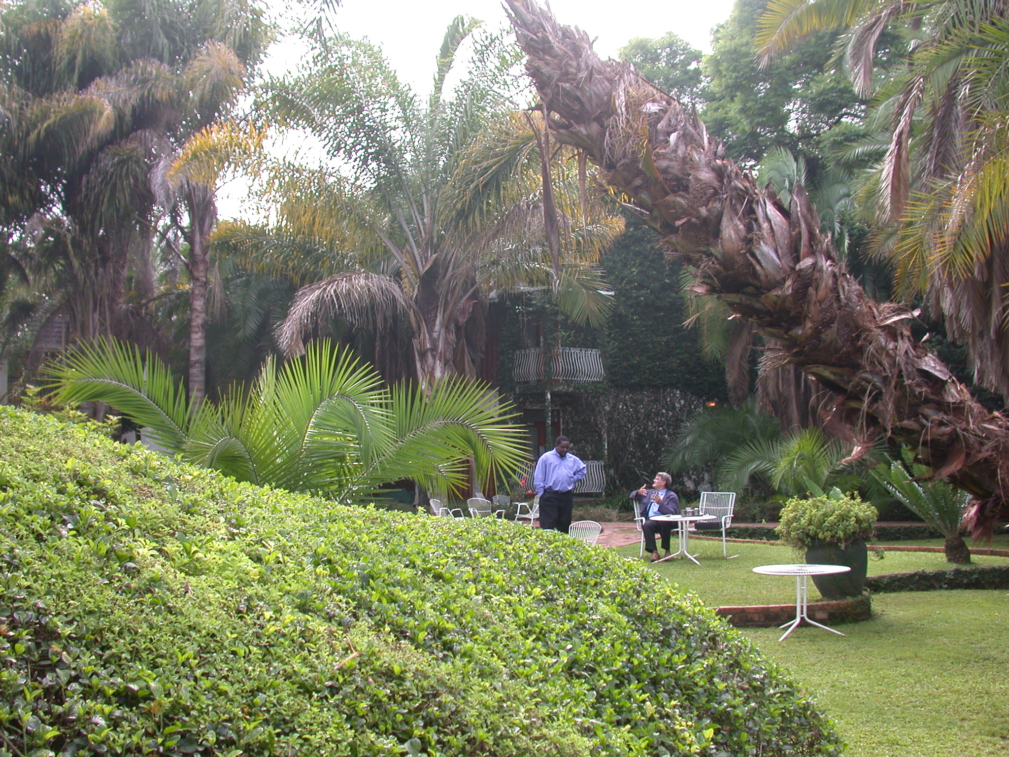 Grounds of Bronte Hotel, Harare, Zimbabwe