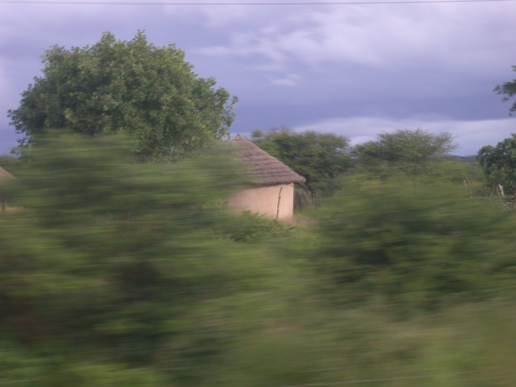 Landscape and Cone-on-Cylinder Buildings Between Harare and Masvingo, Zimbabwe