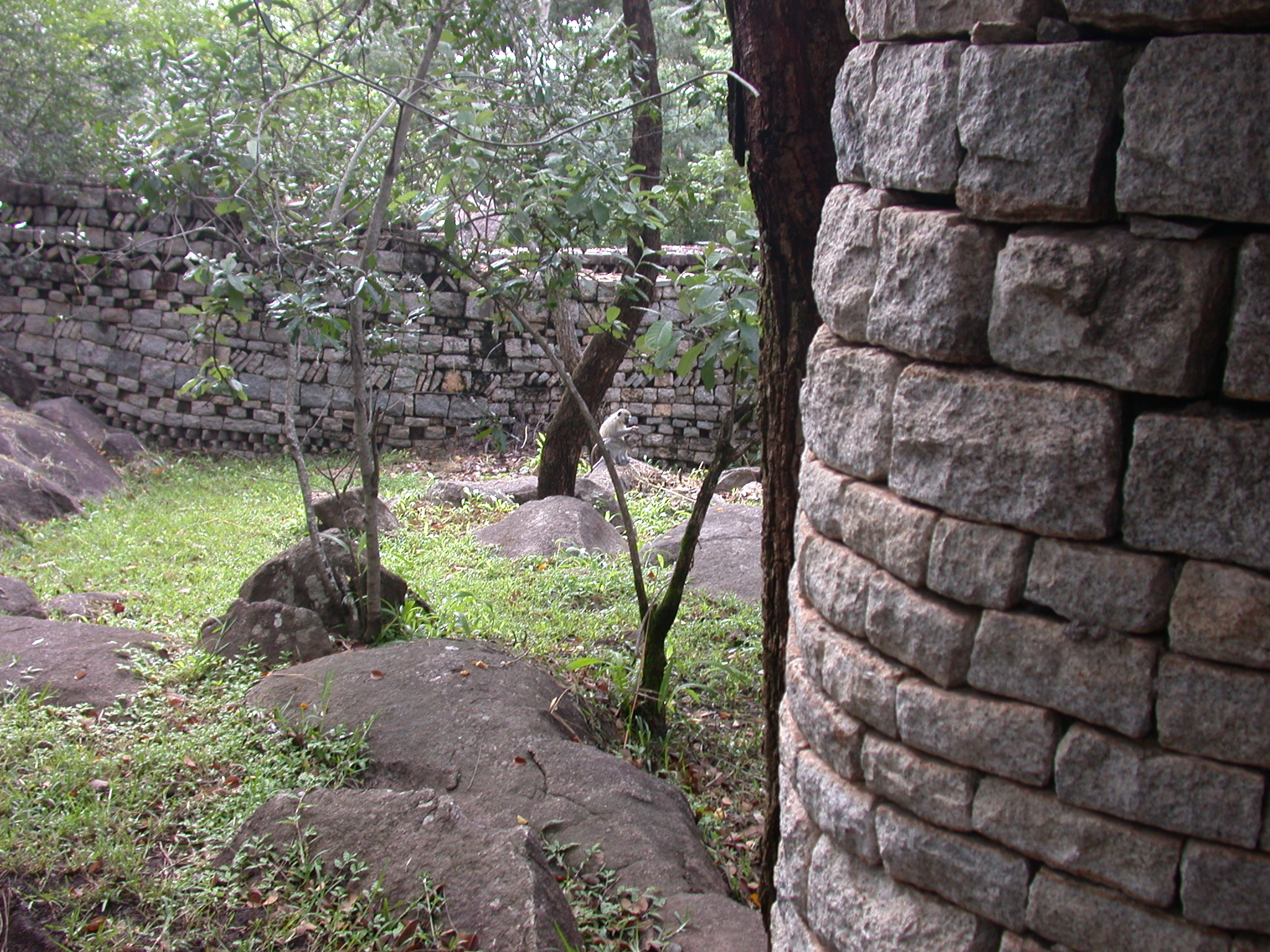 Walled Garden of My Suite at the Ancient City Lodge, Great Zimbabwe, Outside Masvingo, Zimbabwe