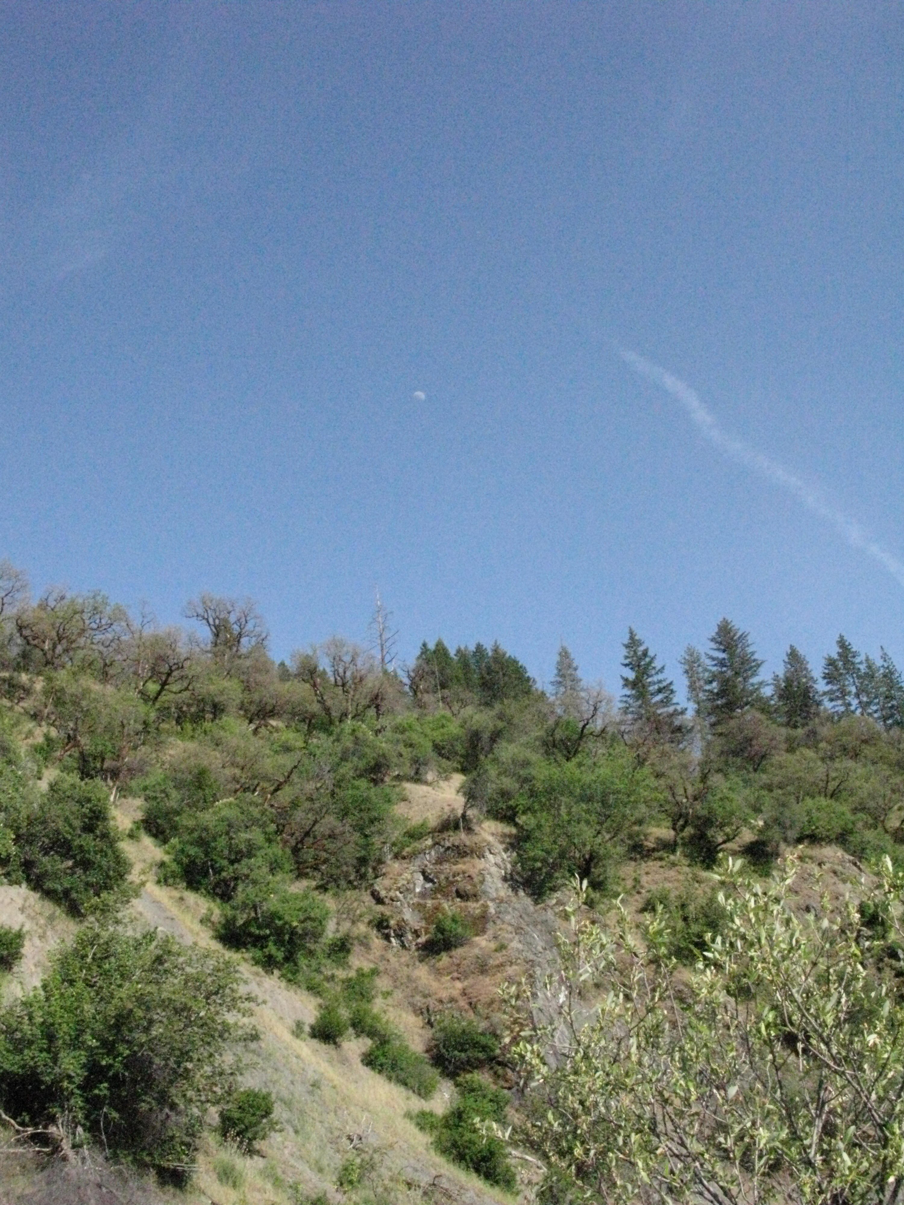 Moon Above Bluff Along Eel River, Covelo Yoga and Healing Festival